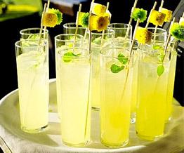 Bebidas y Barras de Tragos